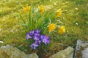 Frühling in Klaffenbach